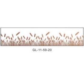 腰线GL-11-59-20